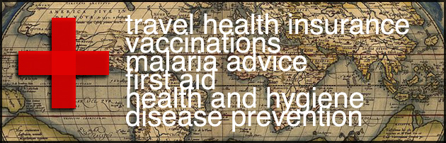travel health planning